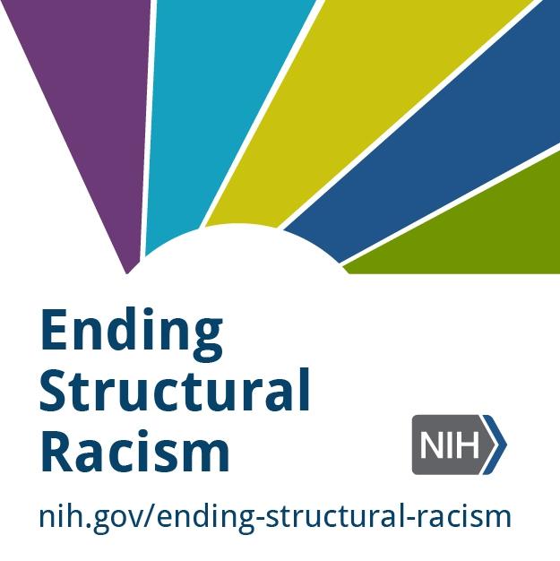 Ending structural racism web badge.