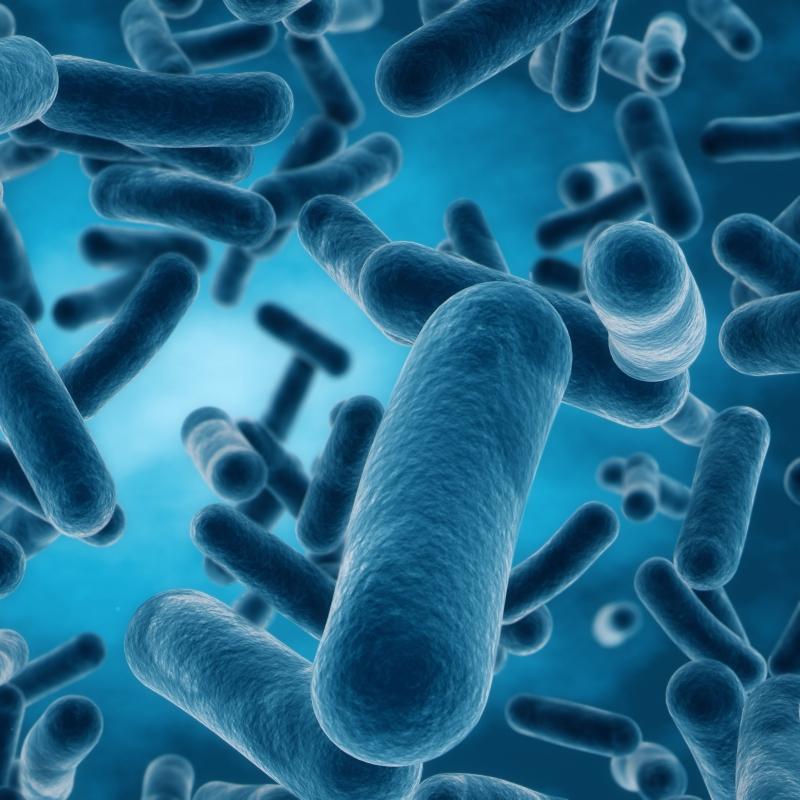 3d rendering of bacteria